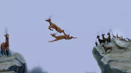 6只羚羊飞跃万丈悬崖,第6只才是高手,镜头拍下全过程!