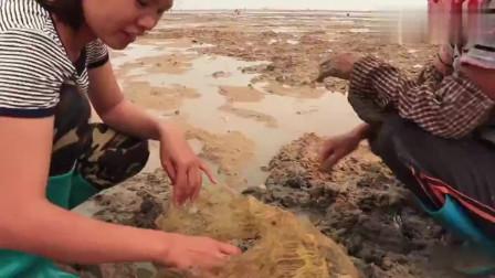 """赶海发现""""蟹王"""",夹着比自己大几倍的巨鳝开吃,全部带走吧"""