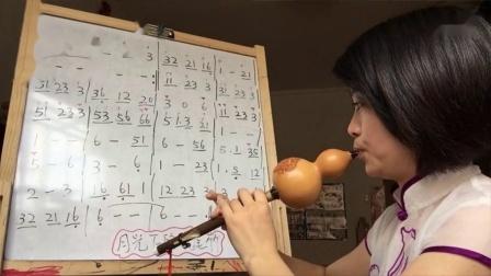 零基础自学葫芦丝,月光下的凤尾竹,教学视频(完整版)