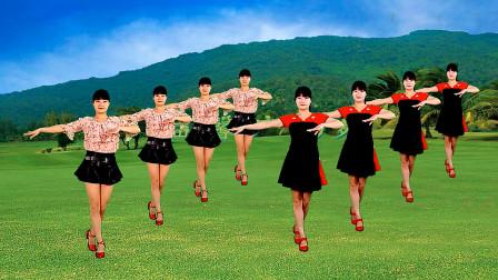 广场舞《自由飞翔》凤凰传奇经典歌曲,简单欢快的舞步,好看
