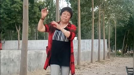 广场舞 小苹果 爱英演 19.5.17  号