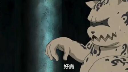 火影忍者:原来小九尾这么关心小一尾!还以为他们从小就是冤家呢