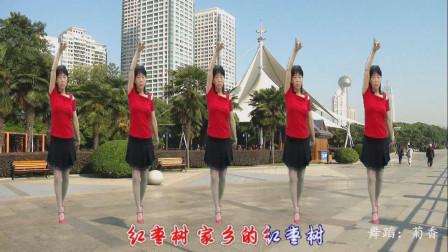 点击观看《初级广场健身舞红枣树 梦中的流星新手学跳舞蹈视频》
