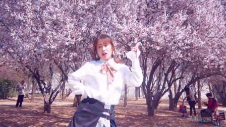 点击观看《流行韩舞%% 甜蜜粉色系apink舞蹈》