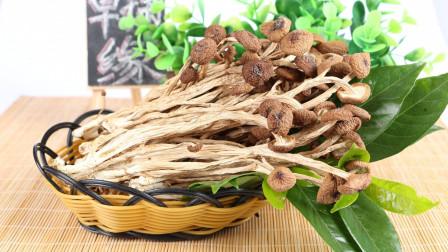 教你茶树菇新吃法,比干锅茶树菇好吃多了,咸香鲜美,超好吃!