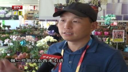 打造空气凤梨专区  新奇特植物亮相世园会园艺超市 首都经济报道 20190525