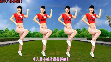 点击观看《32步广场舞教学装什么装 燕子舞蹈教程分解》