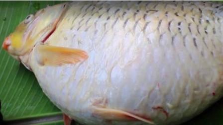 大爷钓上一条10斤大肚鱼,不料打开鱼肚子一看,立马把鱼扔掉了
