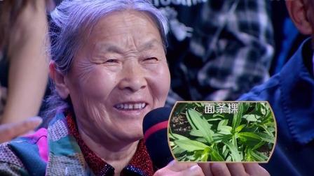 野菜兼具果腹与尝鲜功能,诗词歌赋中常见其身影 中国味道 20190601