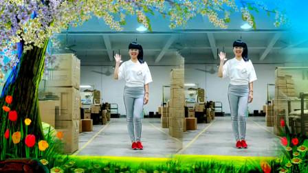 点击观看《麦芽学跳情花毒DJ舞蹈 工厂大姐最爱跳》