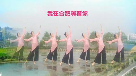 0基础好学初学舞蹈我在合肥等着你 桃花朵朵开广场舞背面演示教学