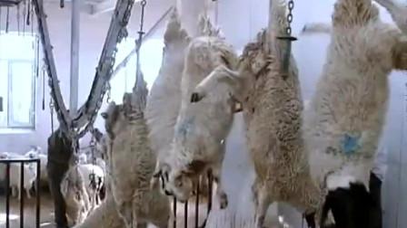 屠宰场批量杀羊,这比杀猪要简单得多,就是有点残忍!