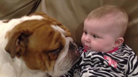狗狗和宝宝正在沙发上玩耍,这时宝宝放了个屁,狗狗的反应真搞笑!