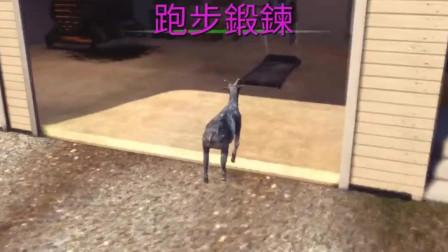 模拟山羊P2:本山羊想去跑步机上跑个步,奈何它不配合啊