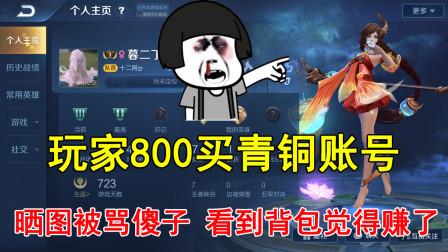 王者荣耀:玩家800买青铜账号,晒图被骂傻子,看到背包觉得赚了