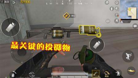 和平精英:游戏中最重要的投掷物,不是手雷,默认拾取10个!