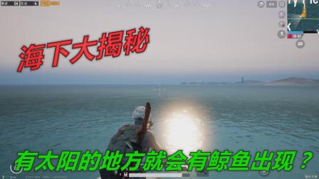 和平精英挑战骚操作 网上传闻向太阳的方向游泳,会有鲸鱼出现!下海大揭秘