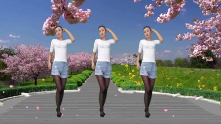 神农舞娘学跳新舞烦恼歌 张学友好听的舞曲