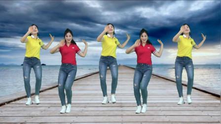 点击观看《简单好学健身广场舞 流行舞步广东爱情故事DJ版》