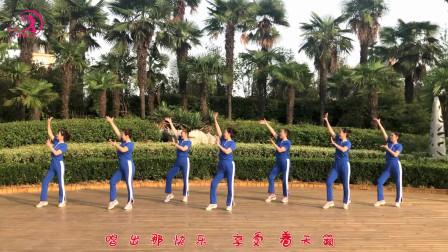 简单现代舞0基础教学分解 美久广场舞美丽中国走起来教程