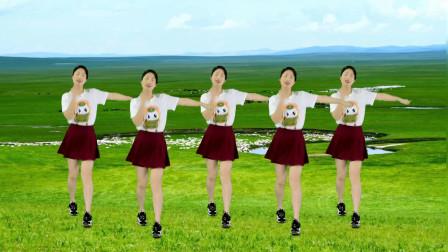 广场舞精选《姑娘我等你》格桑花儿悄悄开,蝴蝶飞舞成双对!