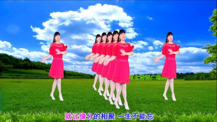 点击观看《简单无基础舞蹈火火的姑娘 河北青青32步广场舞教学分解》