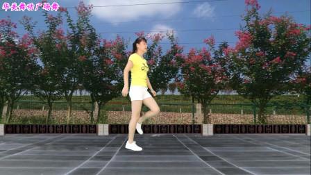 初学者鬼步舞歌在飞 华美舞动鬼步健身舞蹈视频