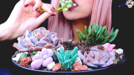 长势喜人的多肉竟是巧克力美食?铲子挖出蚯蚓也能吃?果然颠覆想象!