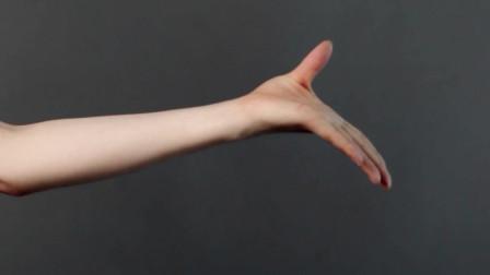 中国舞手型讲解视频