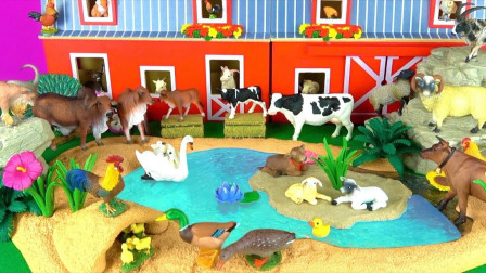 認識北歐農場牧場小動物玩具