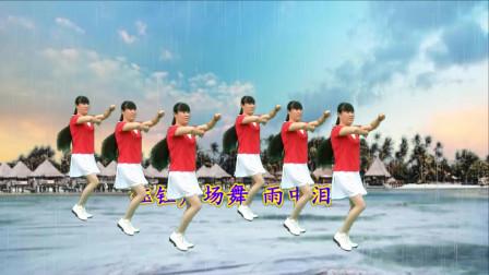 适合初学广场舞雨中泪 钰钰动感舞步教程视频