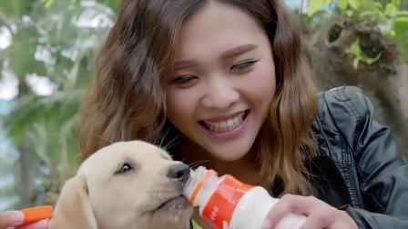欧叶给小七喂食,小七伸出舌头舔瓶盖里的牛奶喝,太可爱了
