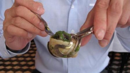 中国人不敢碰的蜗牛,在法国却成了抢手货,一年吃掉30万吨!