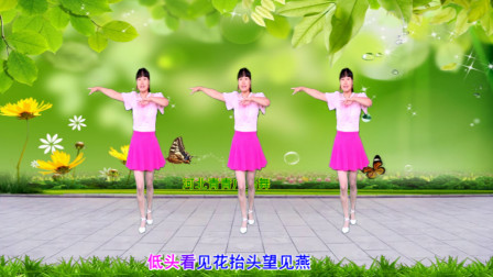 好学无基础32步广场舞美丽的遇见 河北青青演示有教学分解