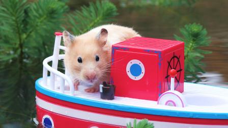 萌鼠的相亲之旅,听说有鼠鼠被帅呆了