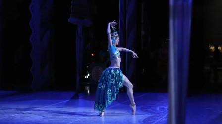 当芭蕾舞遇上孔雀舞,竟可以美的如此柔情!