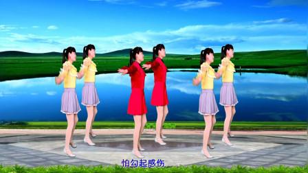 无基础广场舞视频 河北青青32步舞蹈《爱过了也伤过了》