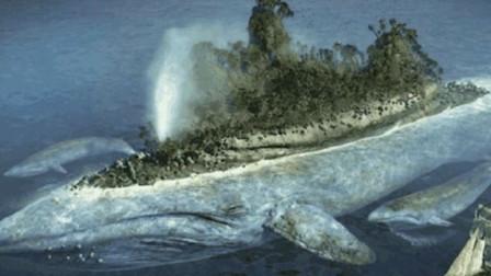 地球上最大的吃货,一天吞掉约5吨食物,排泄时方圆50米无一幸免
