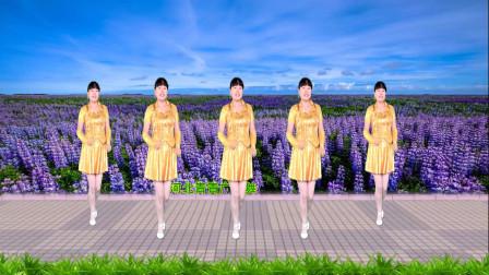 点击观看《适合初学者广场舞教学视频 附河北青青分解8步最美最美》