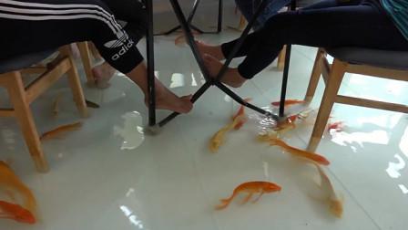 国外男子为养鱼,竟把客厅打造成鱼缸,引来众人排队参观!