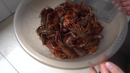 小赵说美食:如何清洗小龙虾