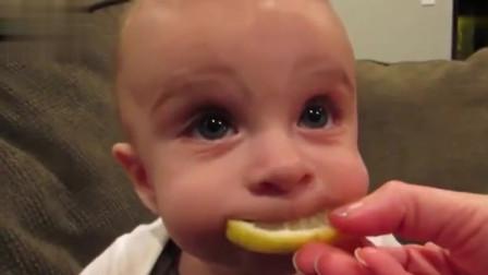 果然初生牛犊不怕虎,宝宝大口吃柠檬的反应笑翻爸妈