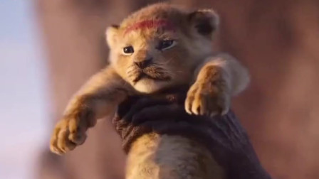 《狮子王》发布角色海报 非洲动物以假乱真