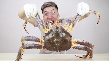 试吃八斤重的帝王蟹,这螃蟹盖儿比我脑袋还大,光蟹腿就能吃饱了