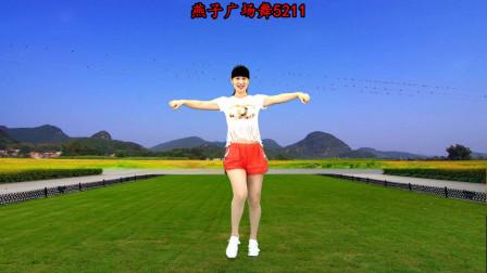 点击观看《燕子5211动感舞蹈视频教学《野花香》适合夏天减肥》
