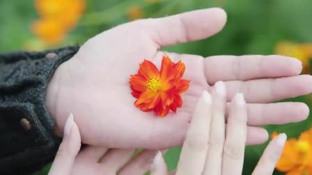 天雷一部之春花秋月:执子之手,与子偕老,傅楼真的超爱他的夫人!