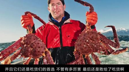 """世界上最""""恐怖""""螃蟹,4米长爪子被称为杀人蟹,却败给吃货"""