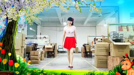 点击观看《流行广场舞视频《红枣树》附分解教学》