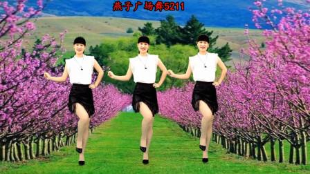 燕子5211水兵舞视频教学《往事只能回味》附正背面分解