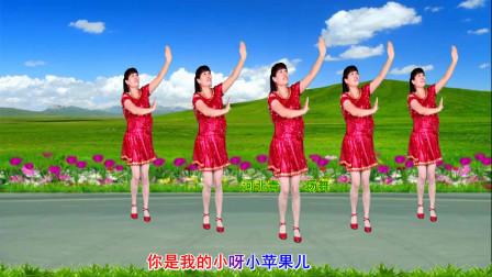 点击观看《河北青青16步舞蹈视频《小苹果》简单好学神曲广场舞视频》